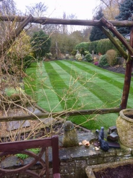 Lawn turf laid in a back garden in Edwinstowe , Nottingham: Swipe To View More Images