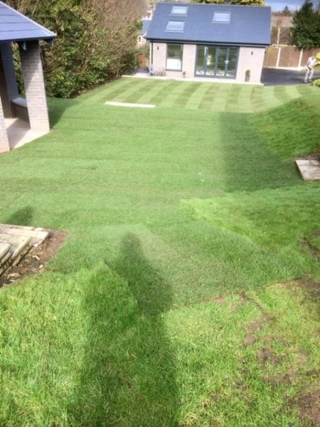 A large lawn laid at Bramcote, Nottingham: Swipe To View More Images