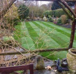Lawn turf laid in a back garden in Edwinstowe , Nottingham: Click Here To View Larger Image